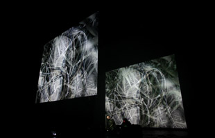 Mirage Festival - Performances - Light, Sound and Death